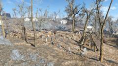 Fo4 Wildwood cemetery
