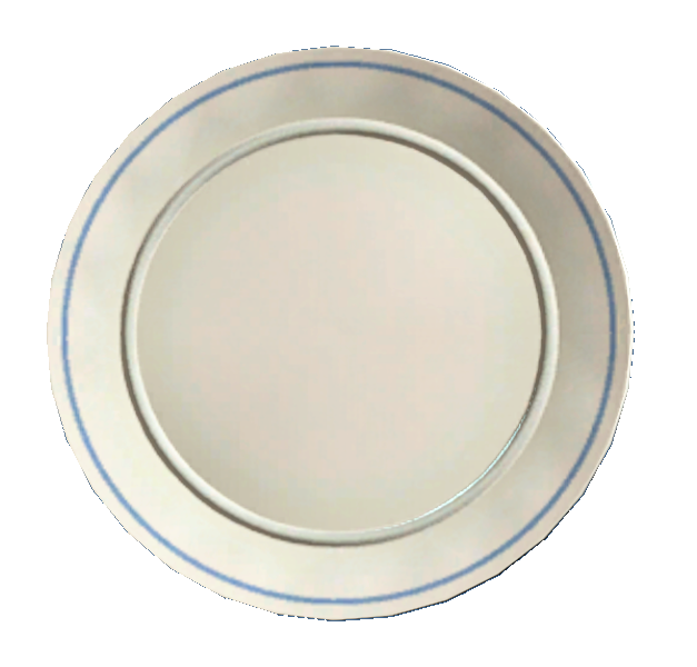 Clean white plate.png