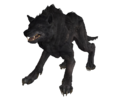 FO76 Vicious Wolf