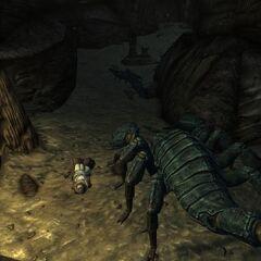 Скорпионья нора