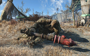 FO4 Wounded behemot