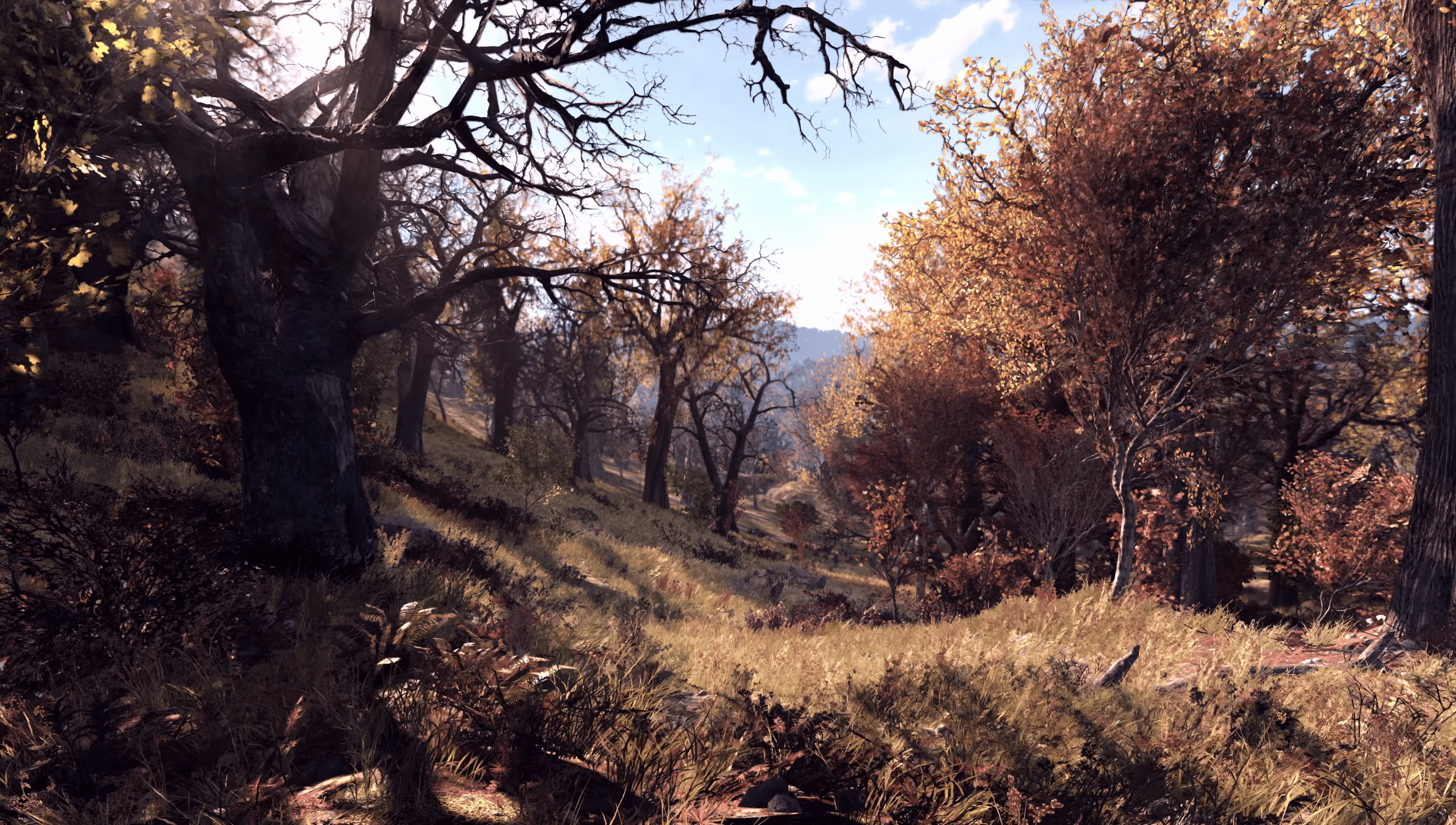 Forest-E3-Fallout76