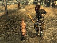 Raider guard dog KBB