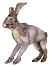Fo4FH rad rabbit