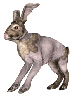 Fo4FH rad rabbit