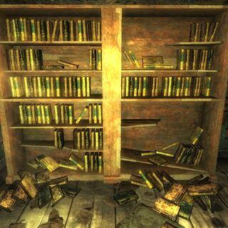 Велика колекція розкиданих книг