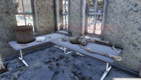Summerville laundromat Skeleton 01