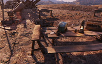 FO76 Always watching