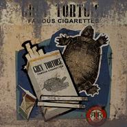 FO4 Busstopbanne Grey Tortoise