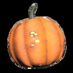 FO76 pumpkin
