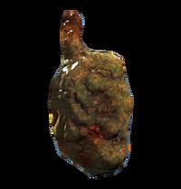 Bloatfly gland