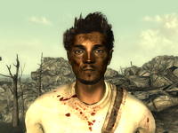 FO3Wasteland doctor15