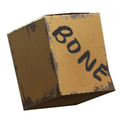 FO4 bone