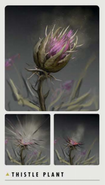 FO4 Art Book thistle plant