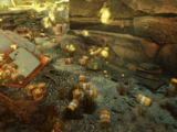 Abandoned waste dump