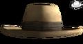 Paulsons hat.png
