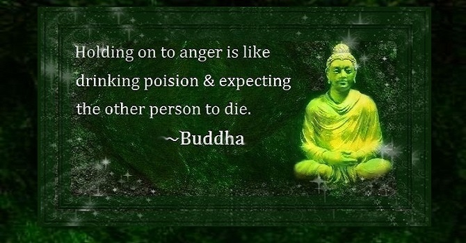 SaintPain Buddha quote Resolution