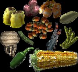 Сушёные растения