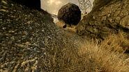 FNV BM Indiana Jones type boulder