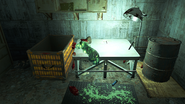FO4 Mystery Meat4