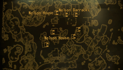 Nelson map