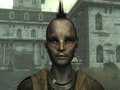 FO3PLTribal2.png