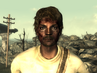 FO3Wasteland doctor13