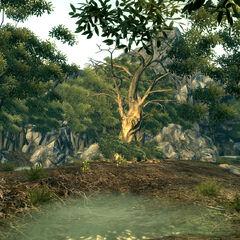 Західна частина Гаї