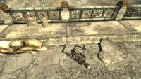 FO3 military camp02 2