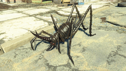 FO4NW Cave cricket 3