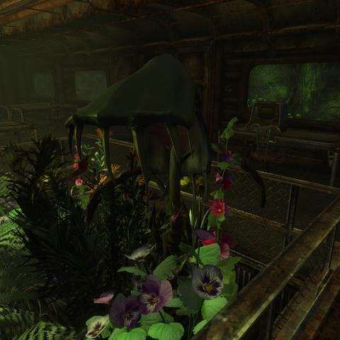 Спорові рослини <a href=