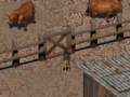 Fo1 Billy.png