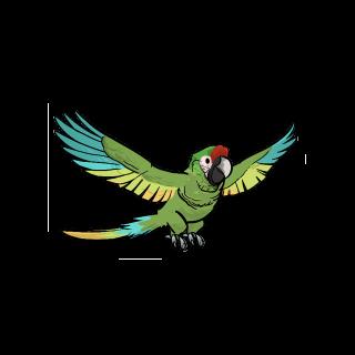 Навчений папуга