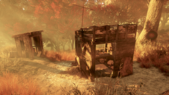 FO76 Hunter's shack