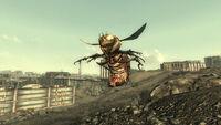 Bloatfly
