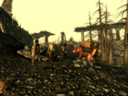 FO3BS Water caravan Attack