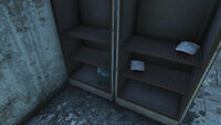 Fo4 chem stash