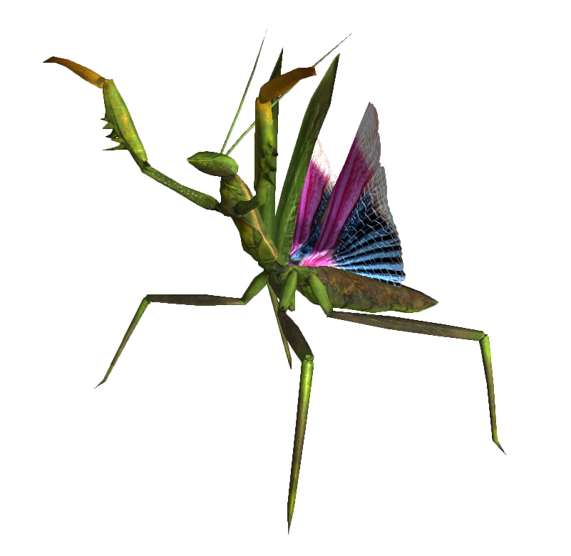 Giant_mantis_nypmh.png