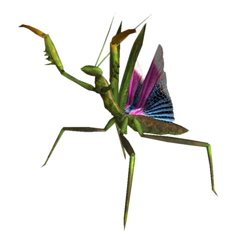 File:Giant mantis nypmh.png