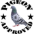 Pigeon Approved