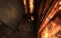 Child's Corpse Vault 92