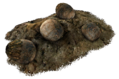 Deathclaw eggs