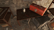 FO4 Walden Pond Big Jim location