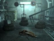 Radroach Vault 101