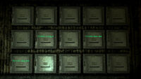 Turtledove camp morgue storage