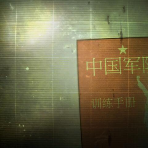 «Бойовий статут китайського спецназу» на <a class=