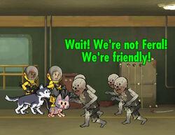 FoS Radiation Leak!