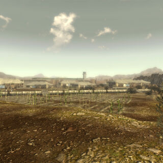 Another view of the NCR Sharecropper Farms