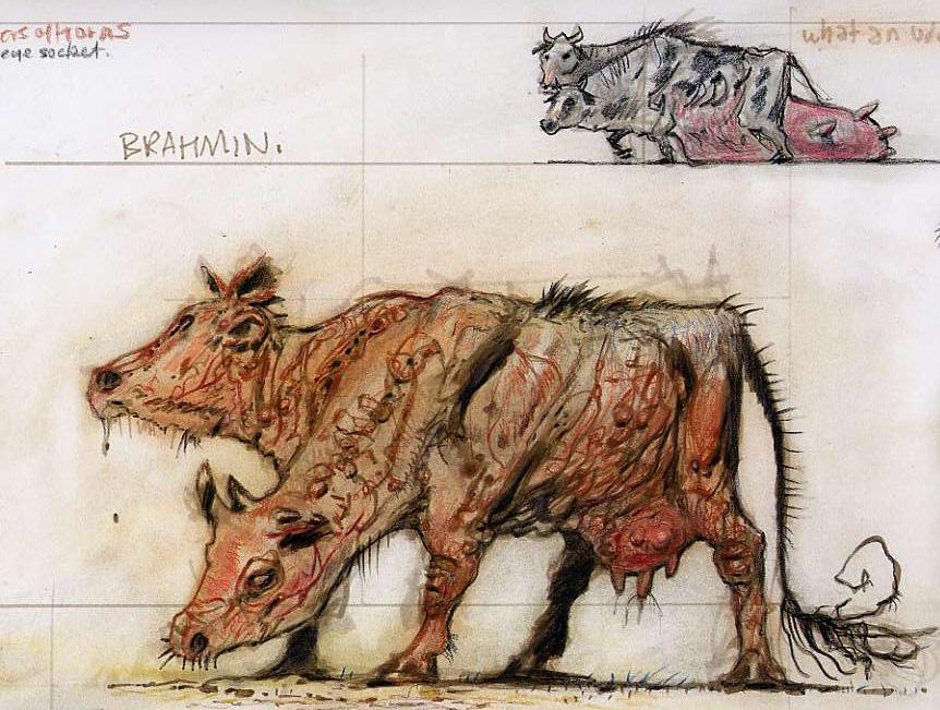 BrahminCA7