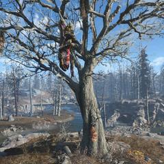 Заковт-пожирач в засідці на дереві